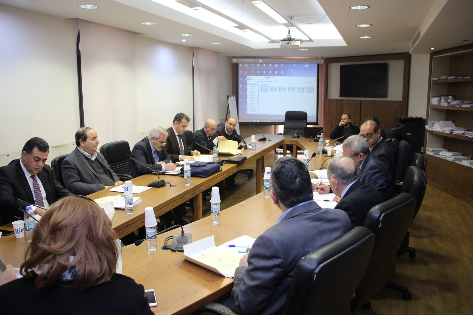 "Fourth Steering Committee Meeting of the project ""Building a rule of law society"""